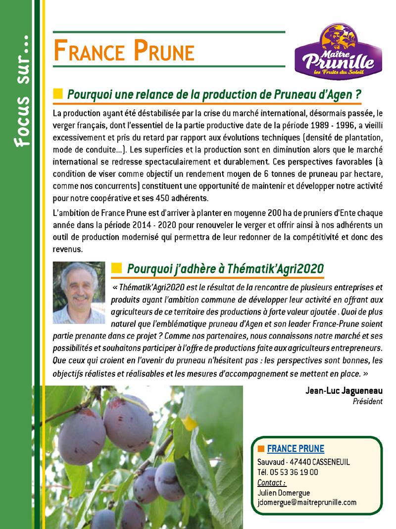 France Prune